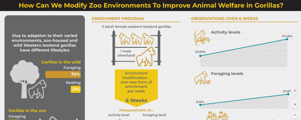 An example of an infographic created by Hindawi Research Promotion Services